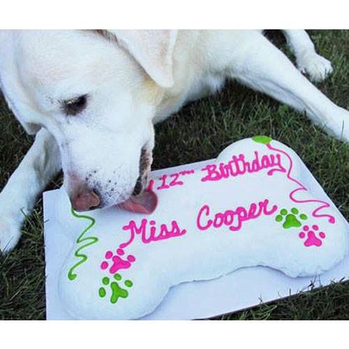 Dog Birthday Cake | Giant