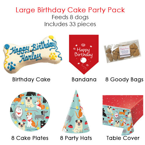 Large Birthday Cake Party Pack