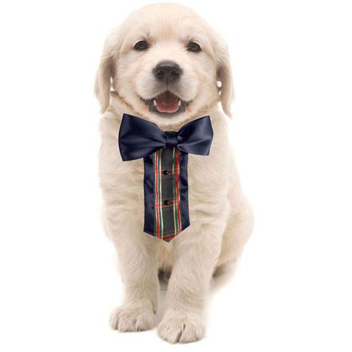 Tartan Tuxedo Bib
