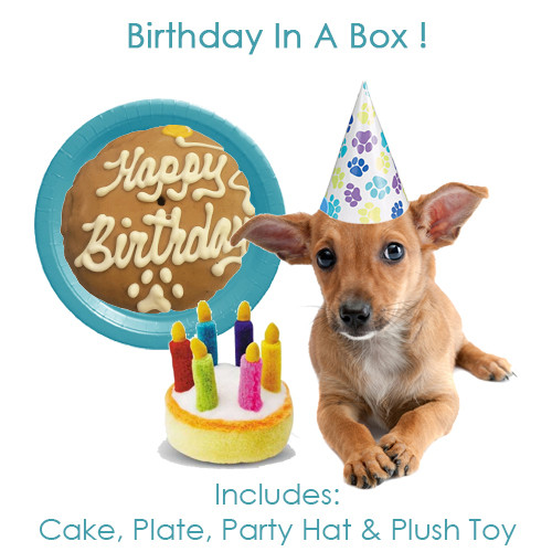 Best Seller!  Birthday in a Box !