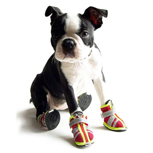 Reflector Dog Boots   Red