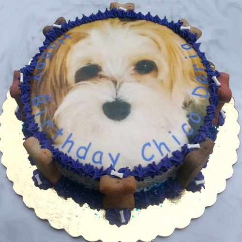 Custom Photo Dog Cake Puppy Kisses