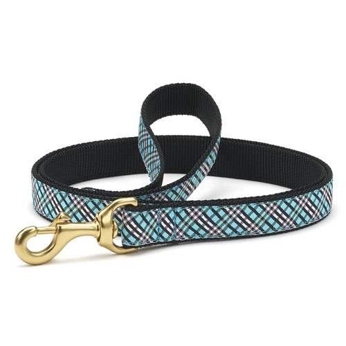 Aqua Plaid Dog Leash