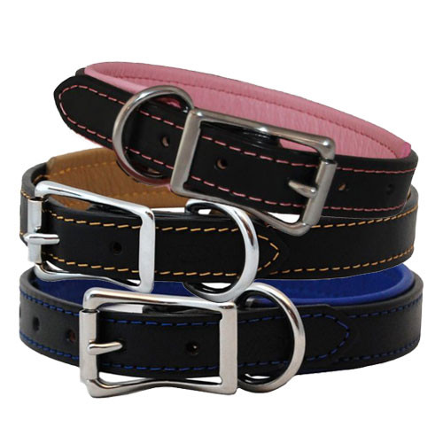 Padded Leather Dog Collar | Black & Stainless Steel