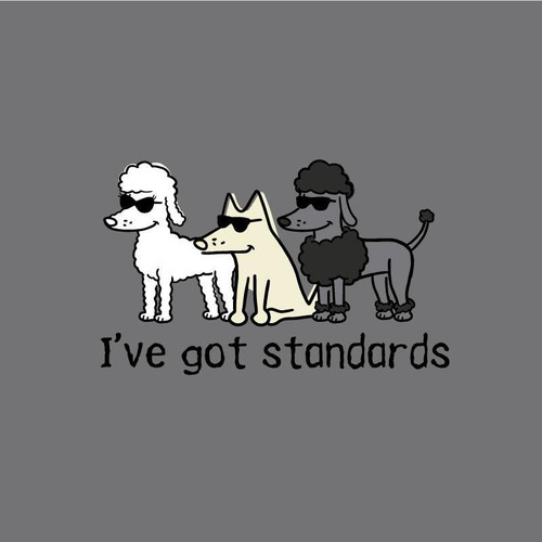 I've Got Standards Classic T-Shirt