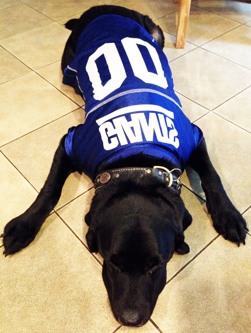 size 40 bd9e7 1ff2f New York Giants Dog Jersey – Blue Trim