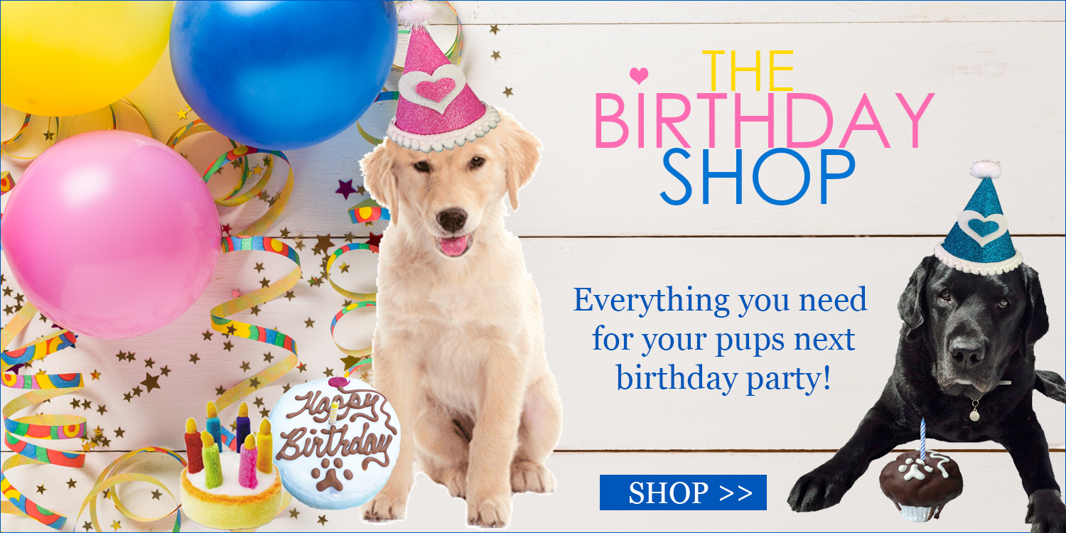 Dog Clothing Accessories