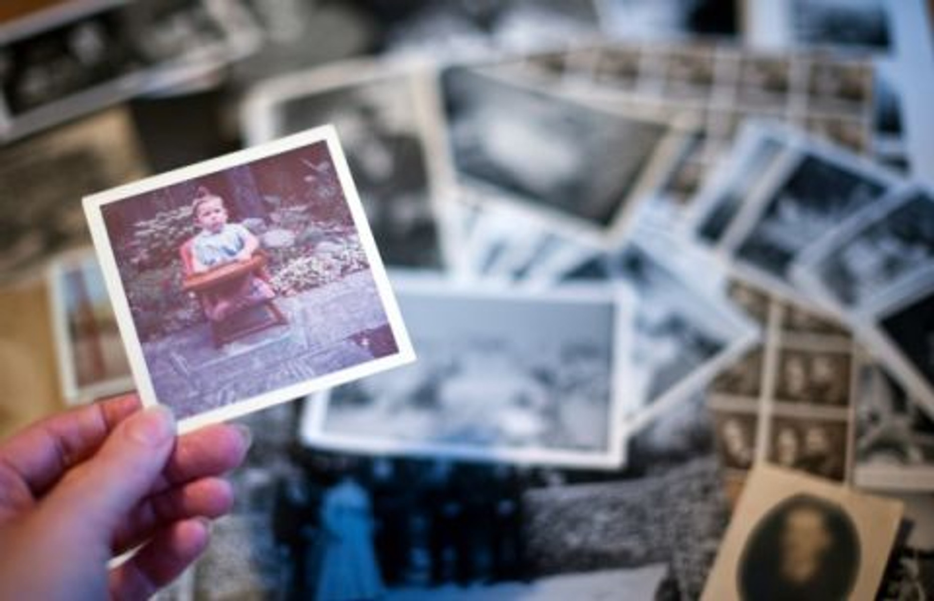 Rhino Memory Trunks: the Sentimental Solution