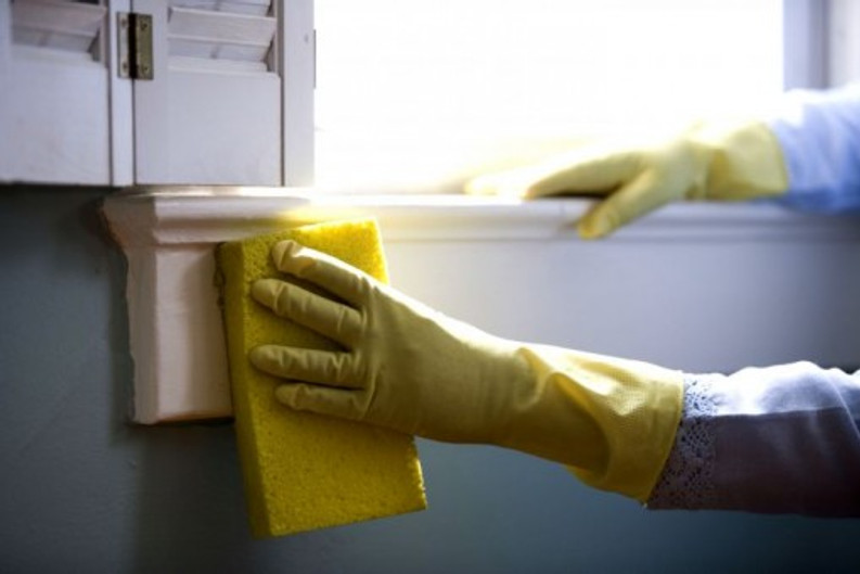 Spring Cleaning in the Time of Quarantine