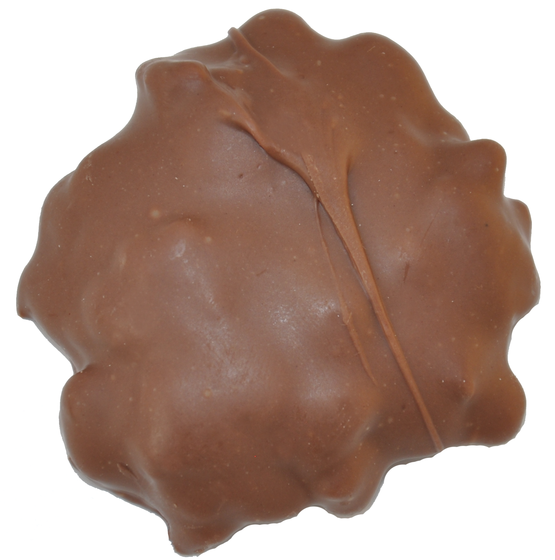 caramel-pecan-cavalier-cropped.png