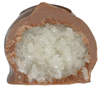 coconut-halved-cropped.png