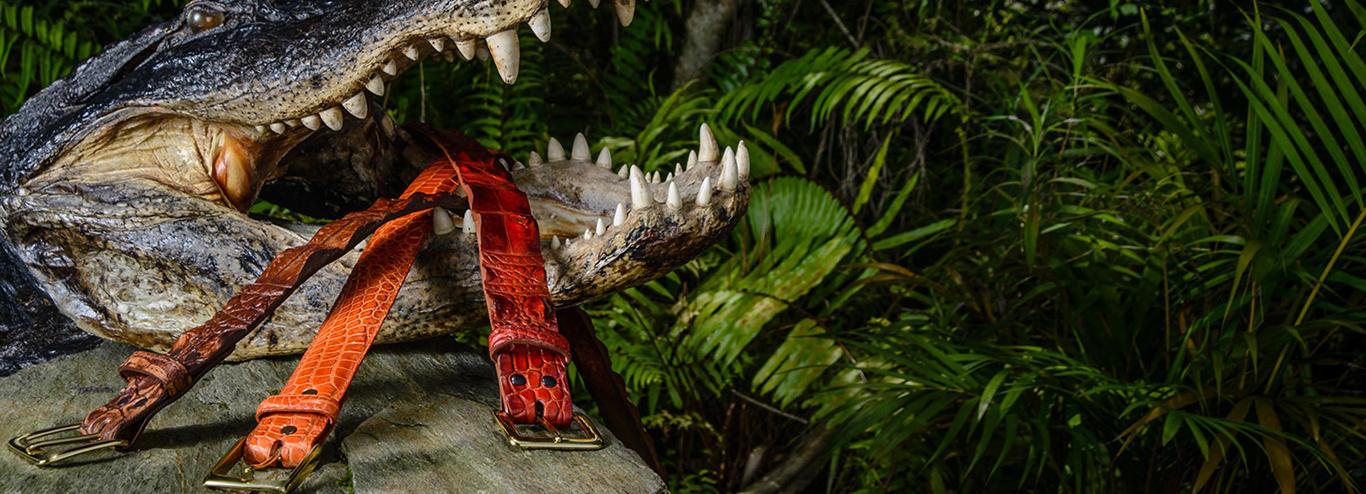 Alligator Leather Belts