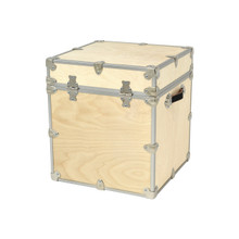 "Rhino Naked Rhino Cube - 18"" x 18"" x 20"" - Back View"