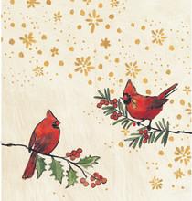 Rhino Holiday Cube Cardinals Exterior