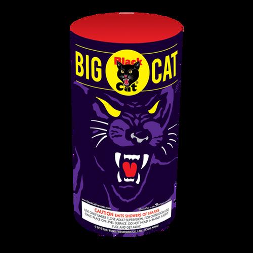 BIG CAT  FOUNTAIN