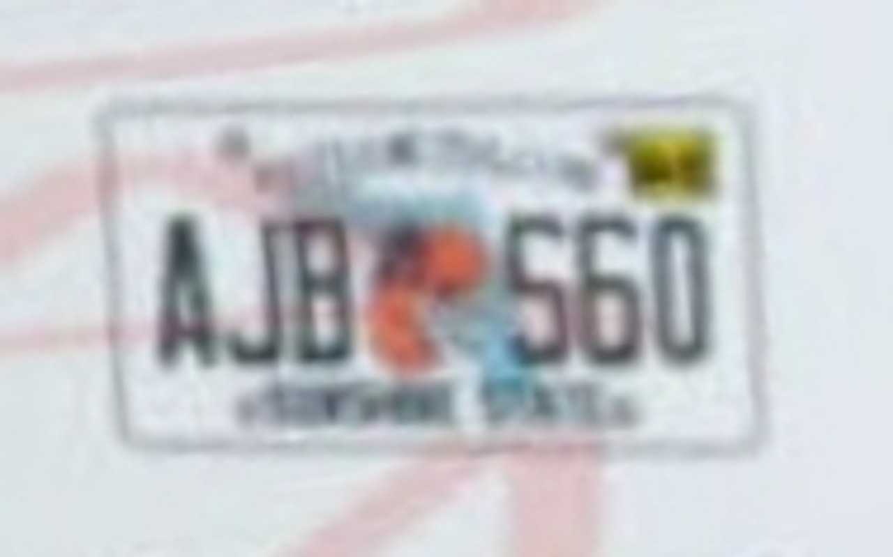 Florida License Plates, Current 1/25