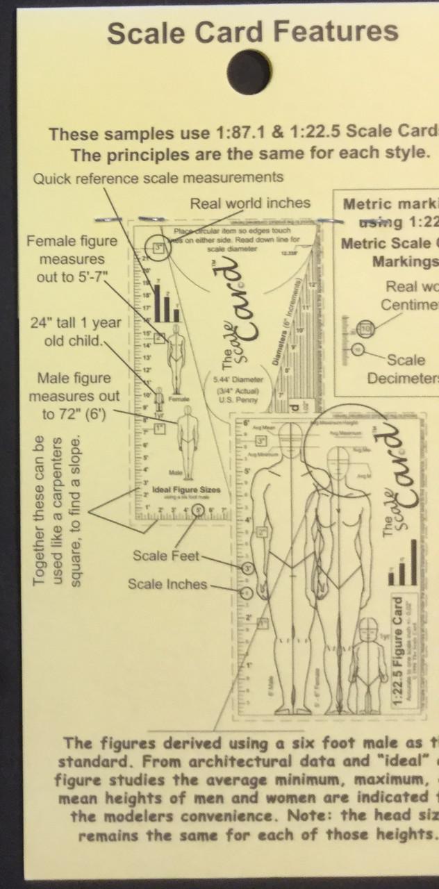 Scale Ruler, 1/16