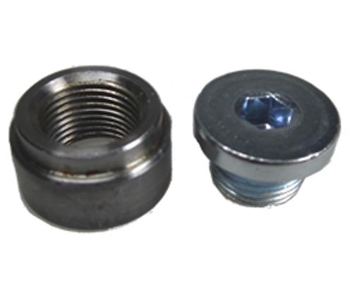O2 Sensor Bung & Plug