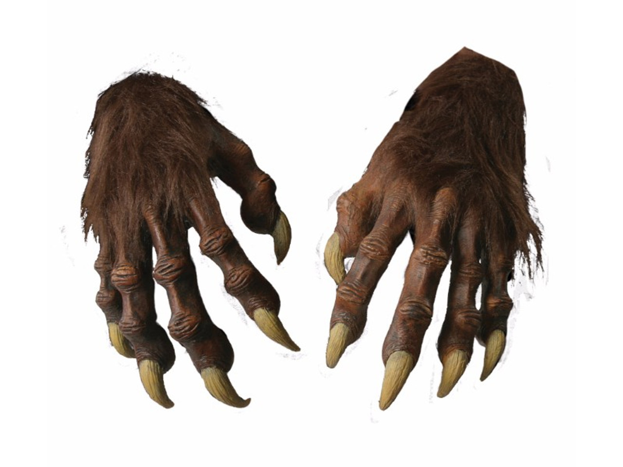 Werewolf Hands Long Fingers And Nails | Houseofhauntz.com