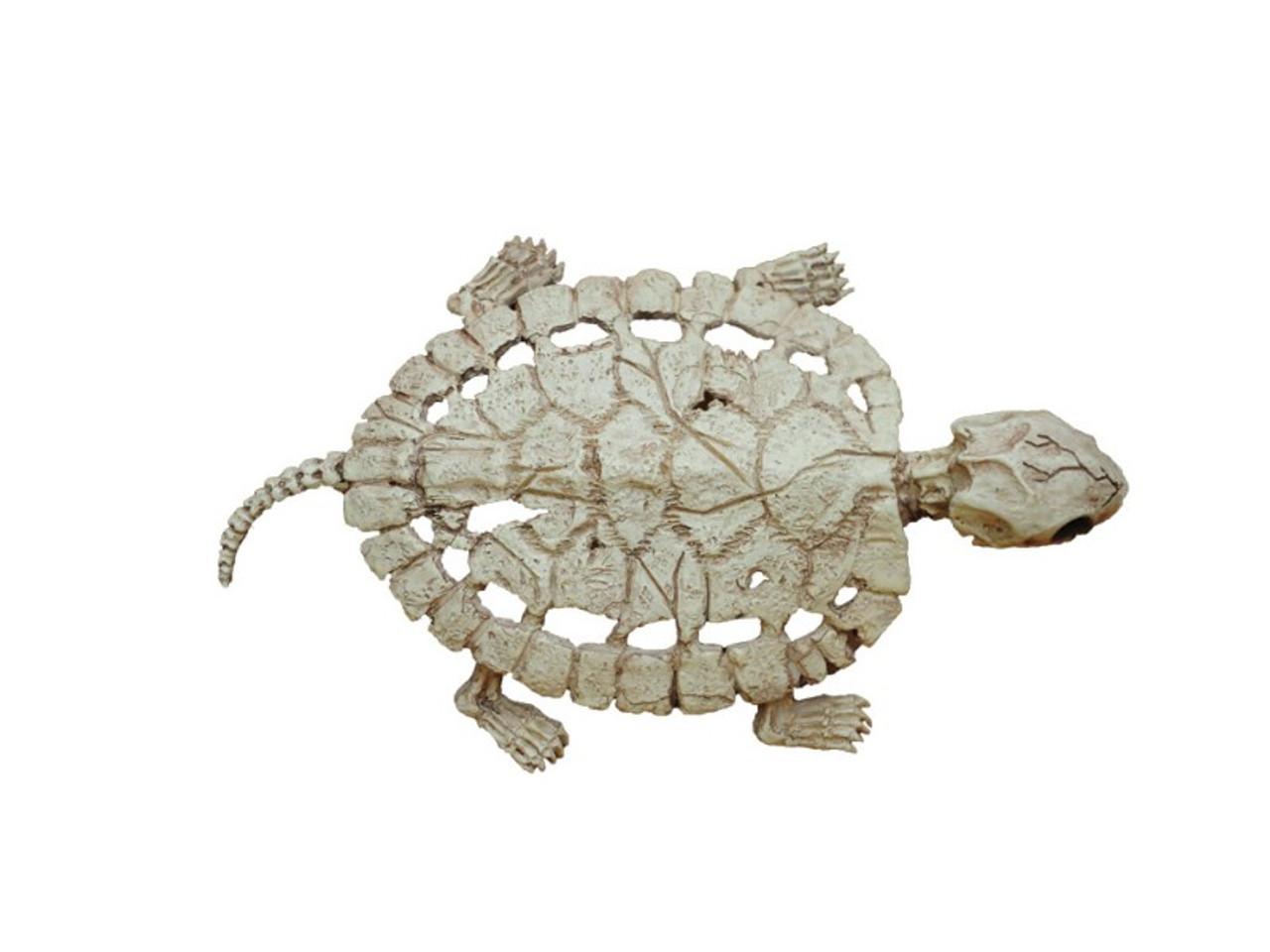 Turtle Skeleton Cheap Halloween Skeleton Decor Save 25
