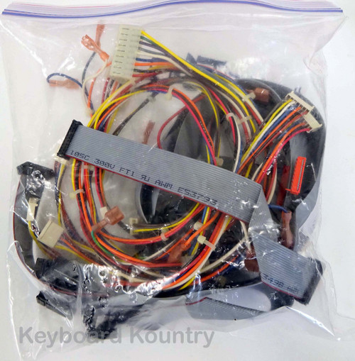 Ensoniq TS-12 Complete Wire/Cable Harness