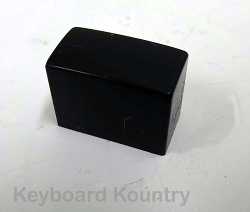 Korg T1/Wavestation Power Switch Cap