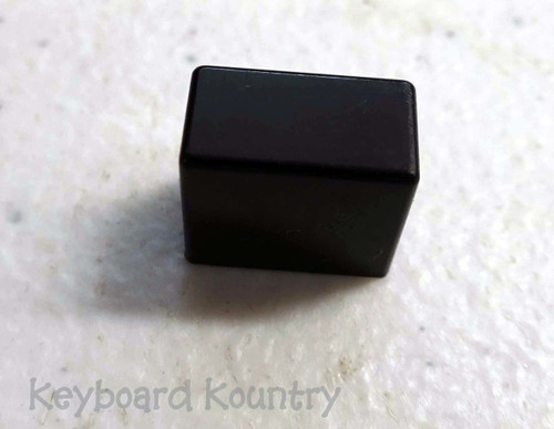 Roland D-5 Power Switch Cap