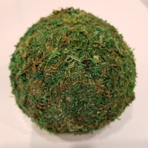 "4"" Moss Sphere"