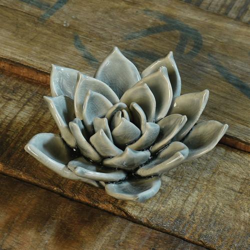 Succulent Grey