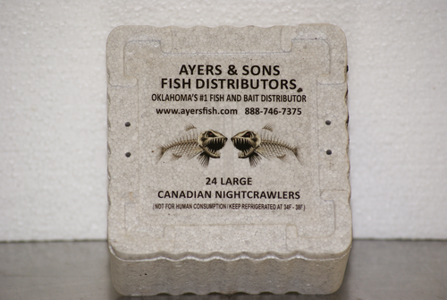 24 Count Canadian Nightcrawlers (16 or 32 Containers)