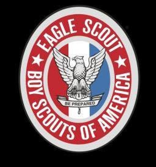 EAGLE SCOUT BADGE PEN BLANK