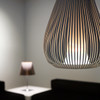 Chasen - Pendant Dimmable Light in White or Black