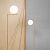IC Lights Floor Dimmable Lamp