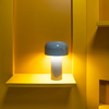 Portable LED Table Lamp with USB Charger and 24hrs Autonomy