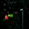 Landlord Spotlight - Outdoor Lamp