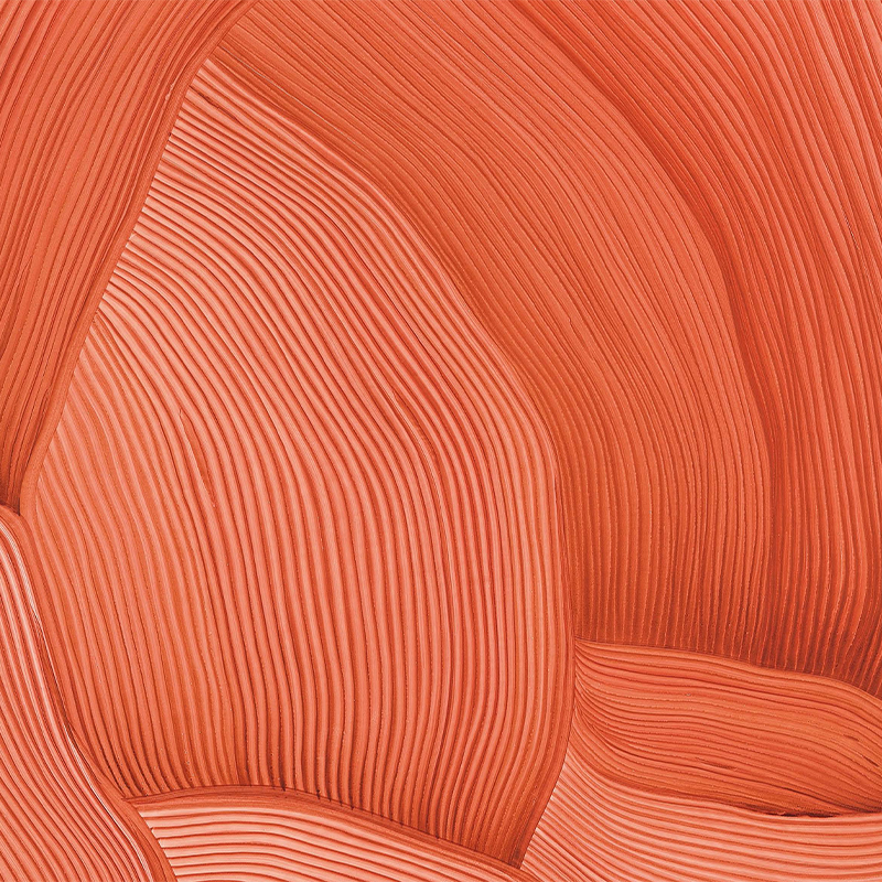 the drawings of Ronan and Erwan Bouroullec