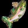 Alpine Rainbow Trout Glass Ornament