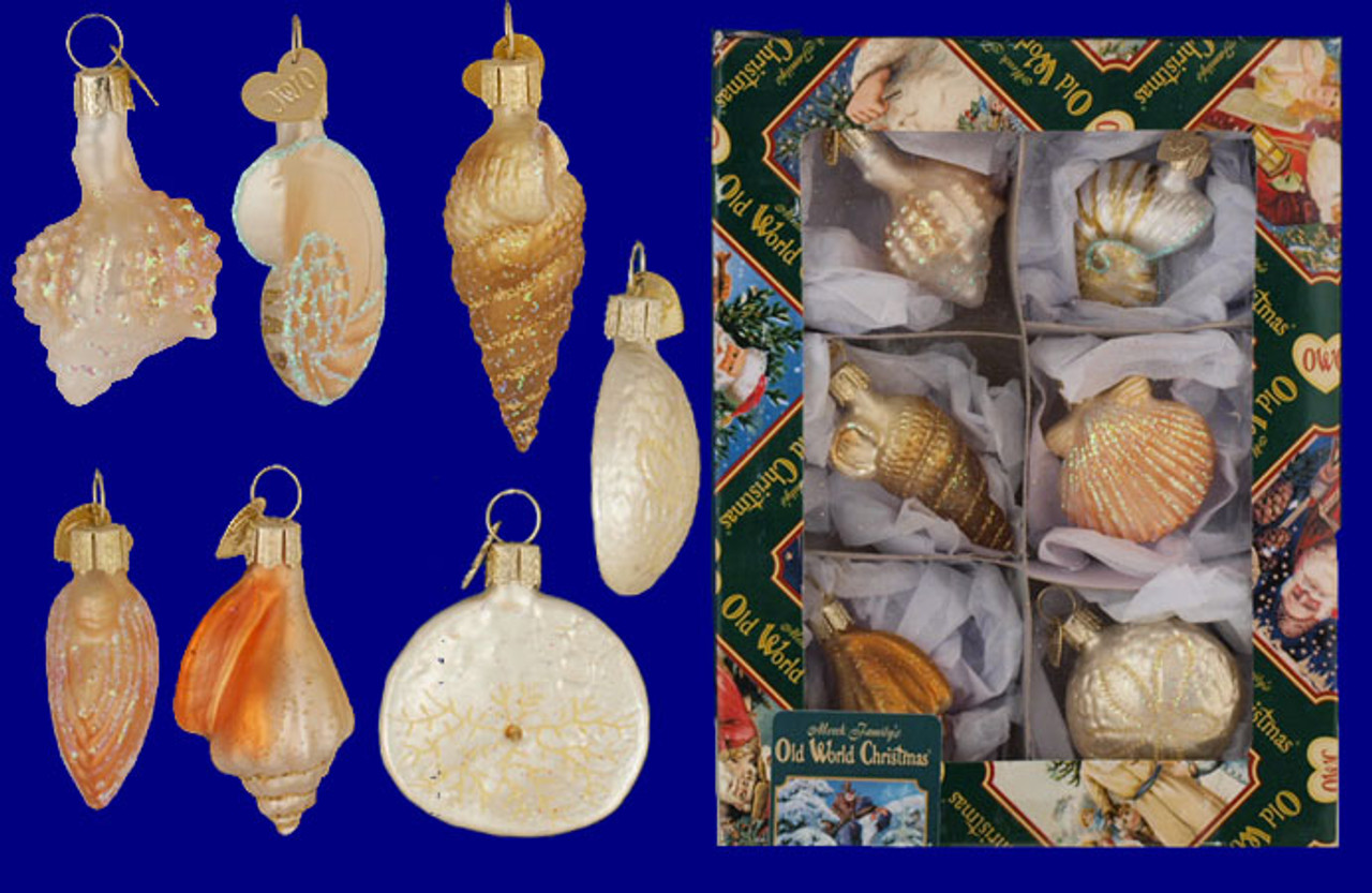 Mini Seashell Glass Ornaments 6 Pc Set By Old World