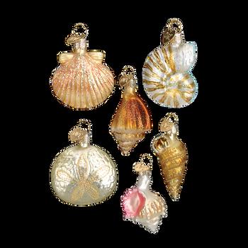 Mini Seashell Glass Ornaments