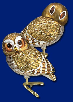 pygmy owl clip on Old World Christmas Glass Ornament 18067