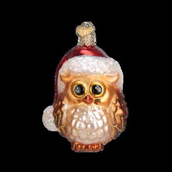 Santa Hat Owl Glass Ornament