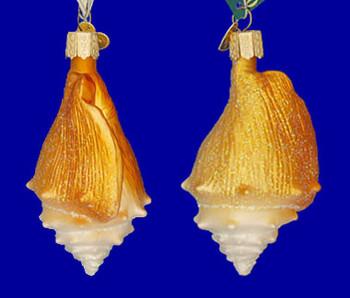 Golden Seashell Old World Christmas Glass Ornament 12178 inset