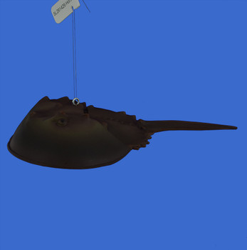 Horseshoe Crab Ornament inset main