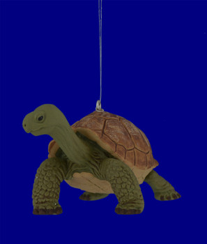 Baby Tortoise Ornament inset front