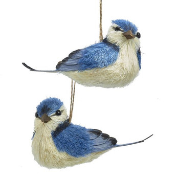 "Sisal Blue Jay Ornament, 5"", KAC7853"