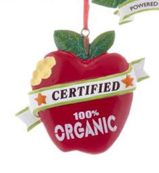"""Healthy Food Organic Ornament, 2 5/8"""", KAA1867-o"""
