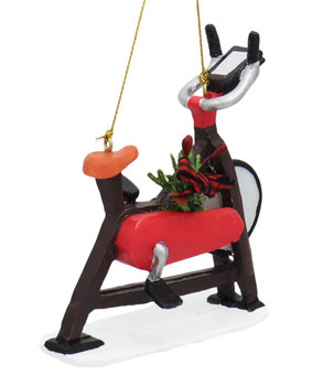 Stationary Exercise Bike Ornament Right Side