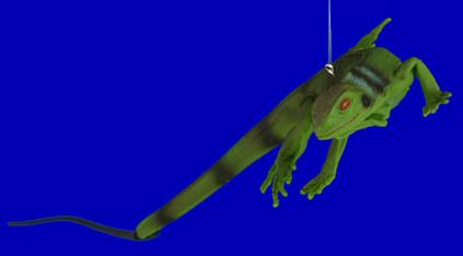 Baby Iguana Ornament