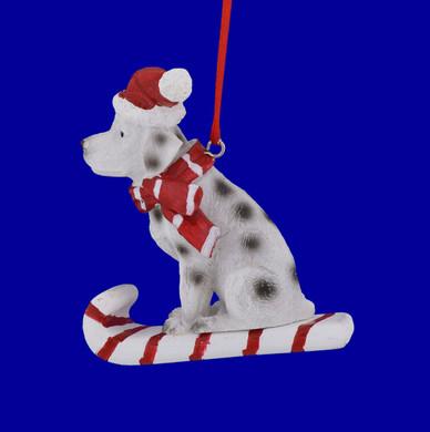 Sledding Dalmatian Ornament