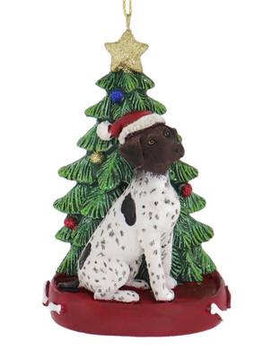 German Shorthair with Christmas Tree Ornament